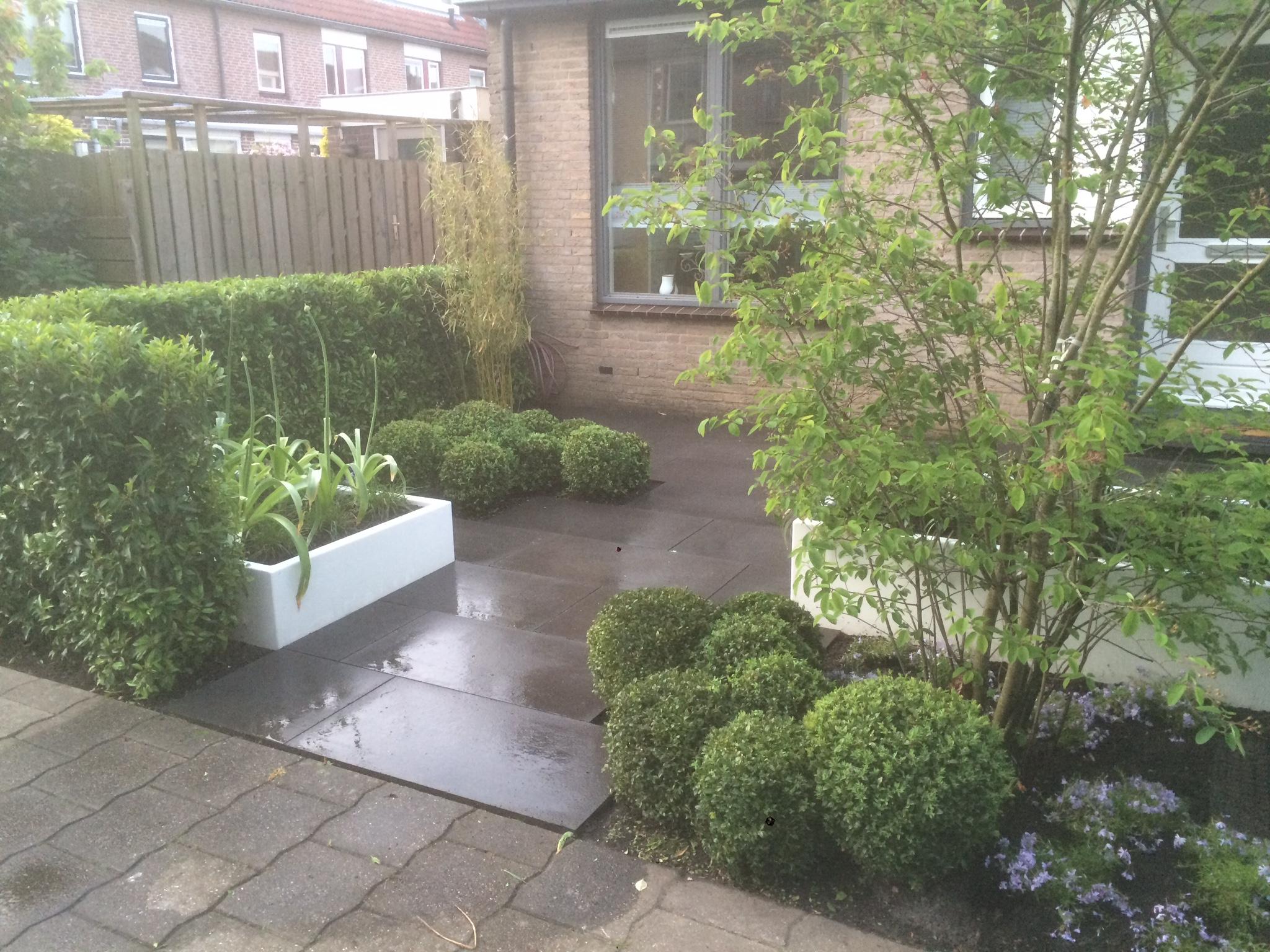 Tuinontwerp op maat voor grote en kleine tuinen for Ontwerp tuin